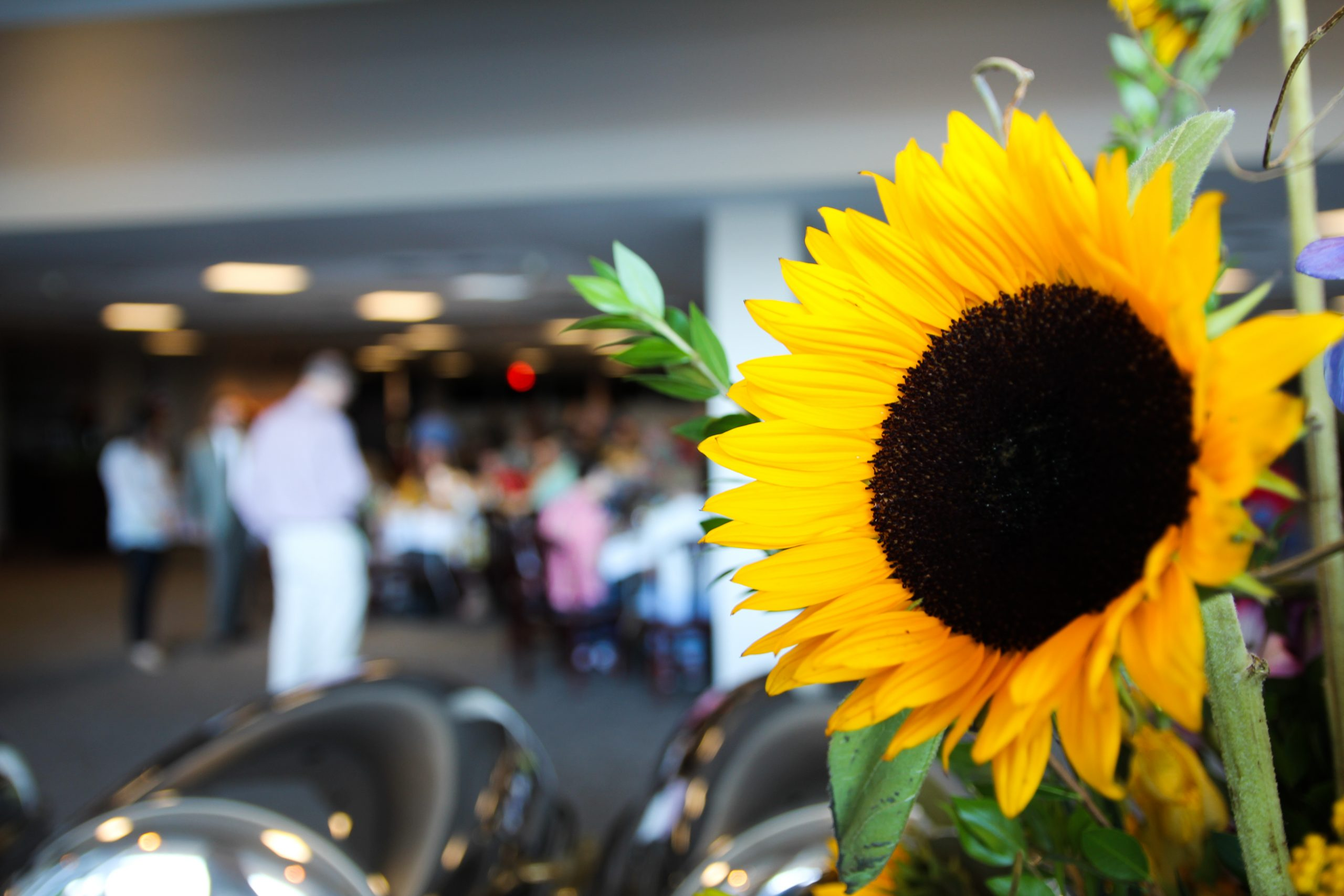 Close up of sunflower table arrangement at the Award Ceremony