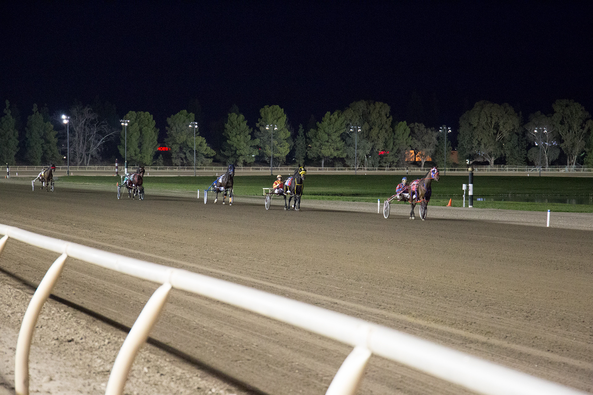 Night time harness racing. A line of racers.