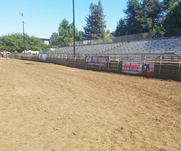 Empty show arena