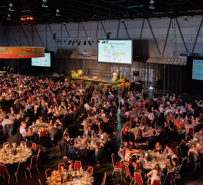 CA State Fair Gala Dinner. Wide shot of a large room filled with tables, chains, and people. Dark lighting.