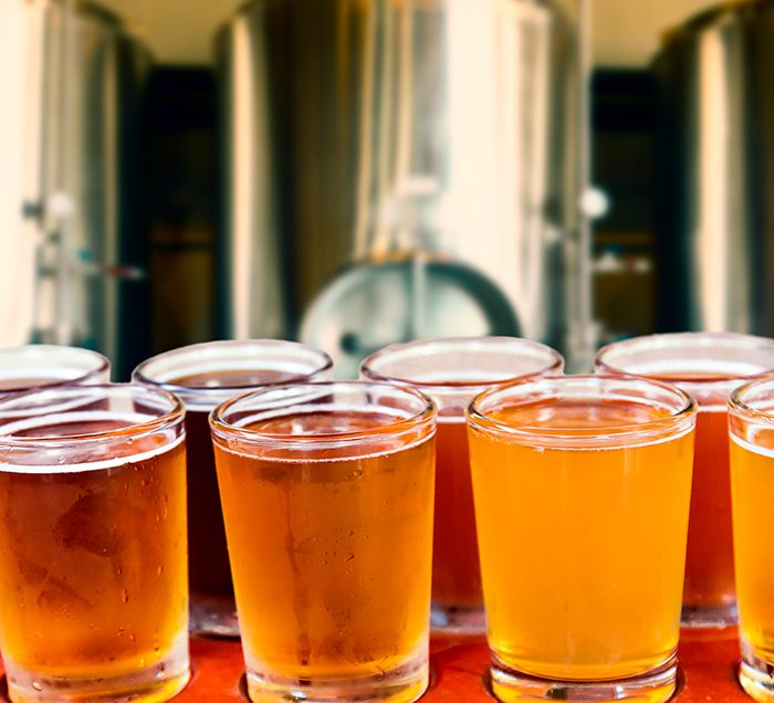 8 glasses of a variety of beer in front of Brewery equipment