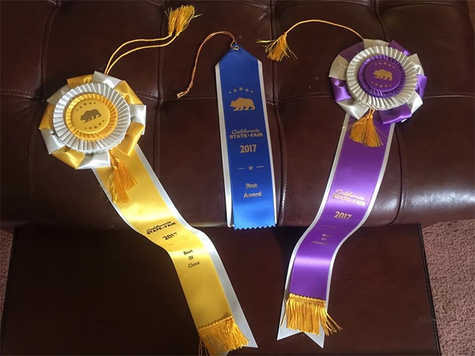 3 ribbons from CA State Fair 2017