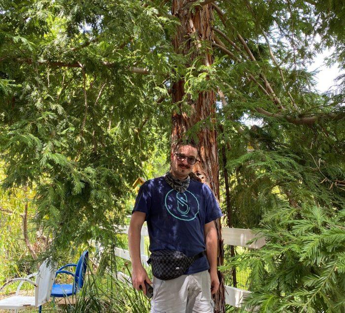 Man standing under redwood tree