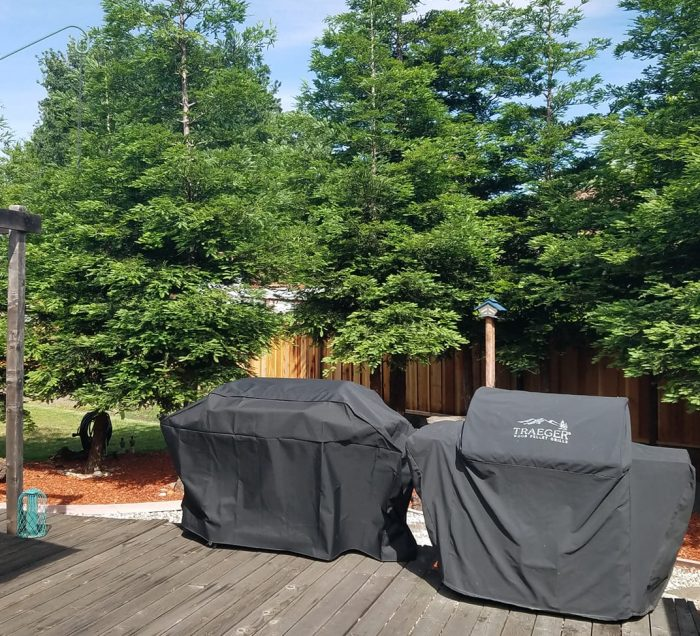 redwood trees with a wood deck patio and two bbq grills
