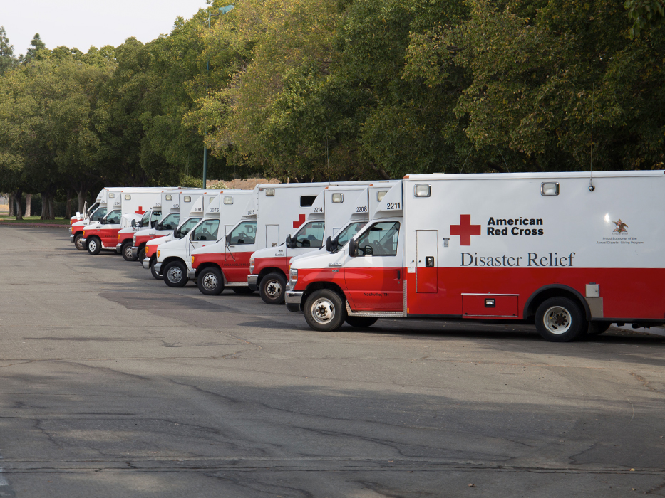 A line of Red Cross Trucks parked at an angle in front of trees